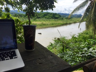 Working overlooking the buffaloes and river